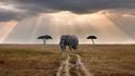 Любовта ми Африка