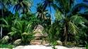 Фиджи: Рай от пощенска картичка