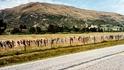 Следваща дестинация: Оградата с хиляди сутиени
