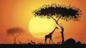 Южна Африка в цифри, факти и легенди