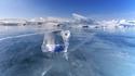 Сибирски музиканти свирят върху леда на езерото Байкал