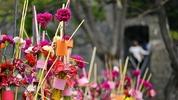 Време за цветя в Жирона (фотогалерия)