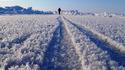 118 дни пеш през Северния полюс