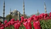 Най-красивите градини и паркове в световни мегаполиси