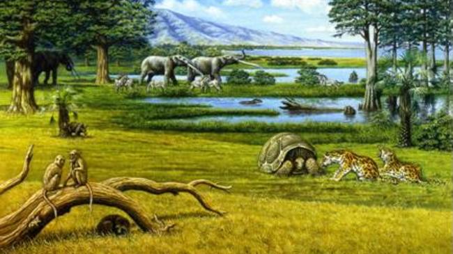 Проф. Николай Спасов за България преди 5 милиона години
