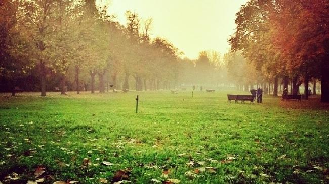София диша - любими зелени оазиси в столицата