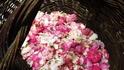 Как да си направите ликьор от рози (рецепта)