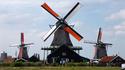 30 знака, че живеете в Холандия прекалено дълго