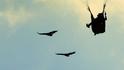 Да летиш с лешоядите (видео)