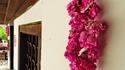 Казанлък – рози и тракийски мистерии