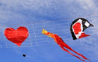 Фестивал на хвърчилата - Шабла