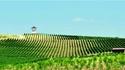 Вила Юстина – бутиково вино и наслада от живота