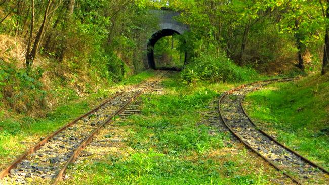 Детската железница в Кърджали - най-старата в България
