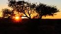 11 неща, които не знаете за Южна Африка