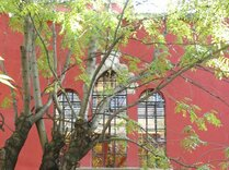 Червената къща - програма