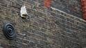 Неизвестни места в Лондон: Носовете на Сохо