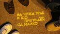 Позитивни истории: Лайка всеки ден в София