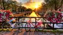 Топ 10 забележителности в Амстердам. Ама по-различни.