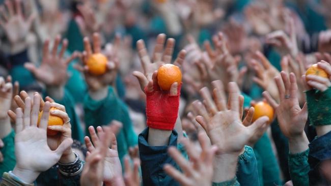 Бой с портокали в Иврея, Италия: Време за цитрусова агресия
