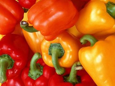 Павел фест - фестивал на чушките, доматите и традиционните храни