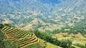 Един българин във Виетнам: Бръмбазък, мотор и оризови тераси