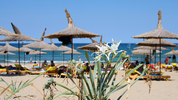 7 причини да се отбиете до Аркутино това лято