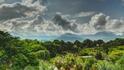 Град и джунгла в едно – пътешествие из Колумбия (видео)