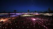 Пустинята в Австралия, огряна от 50 000 светещи цветя