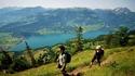Езерото Вален – музика и швейцарски тропици