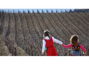 Трифон Зарезан във винарските изби на Мелник