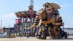 Къде да яздиш слон във Франция?