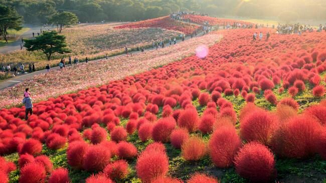 6 от най-цветните места на света