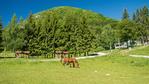 Около Враца: Идеи за разходка на 30 км