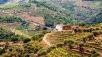Порто - градът на виното, мостовете и трамваите