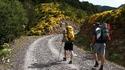 Основни съвети при избор на туристическа раница