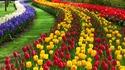 Най-красивите градини с лалета (галерия)