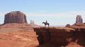 10 вечни филма за любителите на дивата природа