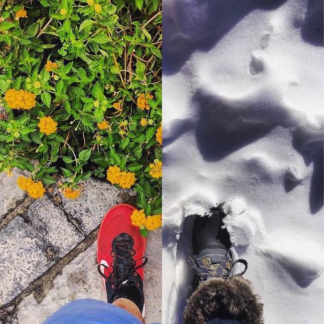 Романтиката на двама влюбени фотографи