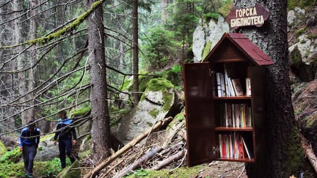Ученици създадоха първата Горска библиотека в Родопите
