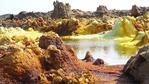 Най-горещото място в Етиопия или люлката на човечеството