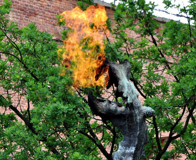 Краков и бърлогата на огнедишащия дракон