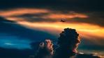6 неща, за които следят стюардите и стюардесите
