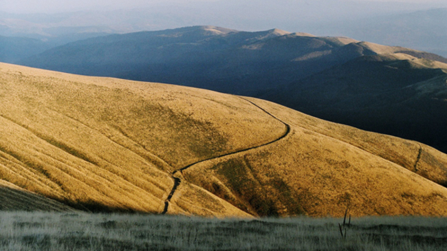 Какво не знаем за планина Осогово?