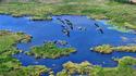 Резерват Сребърна: Птици и плаващи острови