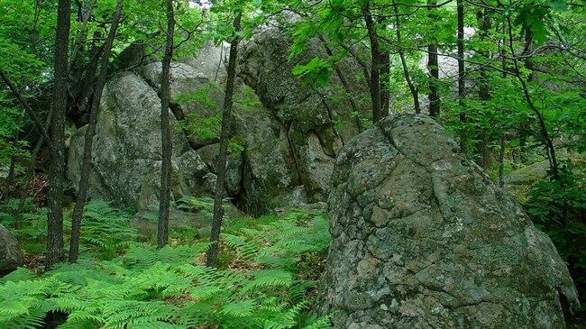 Екопътека Марков-Раюв камък - невероятни гледки край Елена