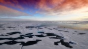 Защо Арктическо море става все по-зелено?
