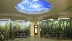 Уикенд с деца: Обновеният Природонаучен музей - Пловдив