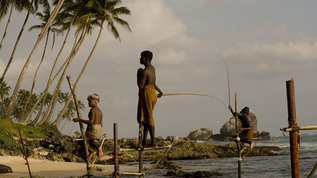 Да ловиш риба от кокили в морето