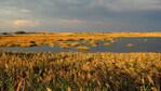 Уикенд идея: Есенна разходка край Шабла