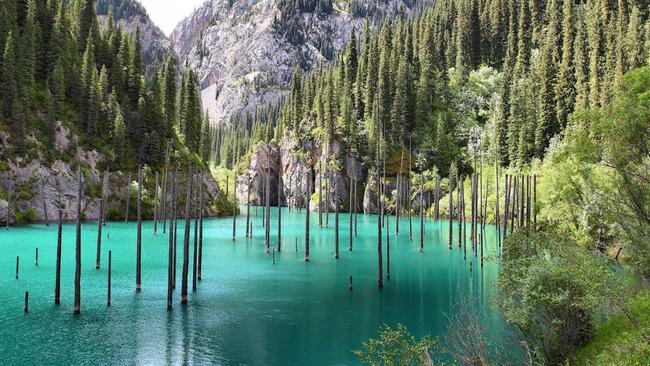 Магичната подводна гора в Казахстан